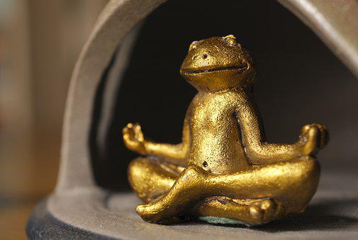 Meditation, Legged, Frog, Yoga, Spiritual, Silent