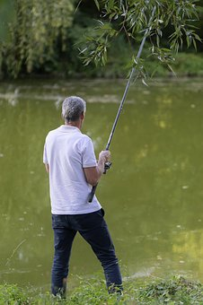 Man, Old, The Person, Adult, Male, Fishing, Rod, Nature