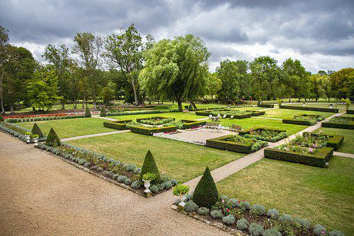 Garden, French, France, Green, Nature, Summer, Botany
