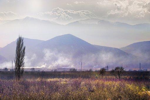Mountain, Landscape, Summer, Grass, Golden, Hour