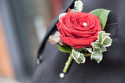 Wedding, Rose, Romantic, Love, Romance, Nature, Flower