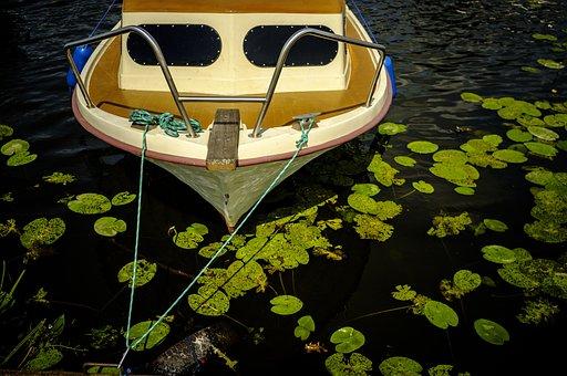 Boat, Lake, Holidays, Water, Seaweed, Summertime