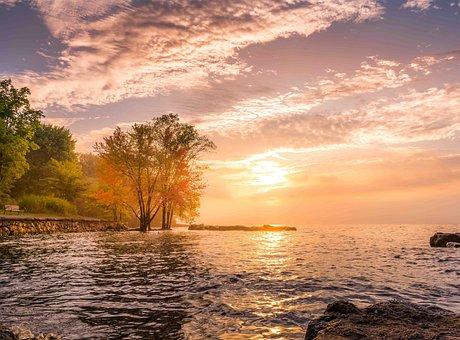Sunrise, Happy, Joy, Nature, Happiness, Morning