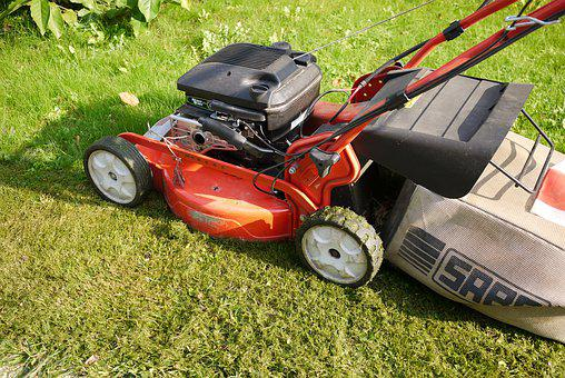 Lawn Mower, Gardening, Garden, Mow, Cut, Grass Surface