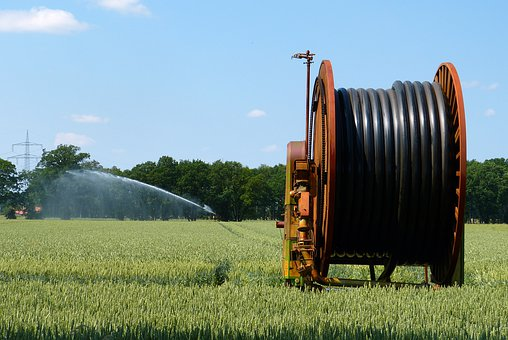 Irrigation, Agriculture, Plant, Green, Harvest, Field