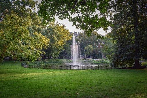 Fountain, Water, Garden, Park, Morning, Light, Scenic