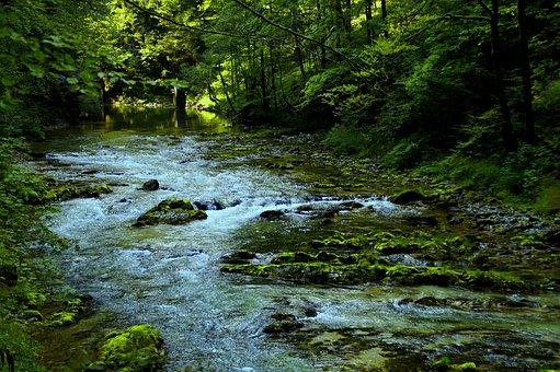 Vintgar Gorge, Gorge, River, Slovenia, Nature