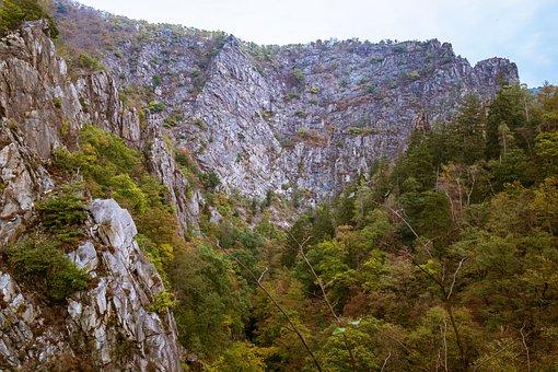 Bodetal, Rock, Rock Wall, Resin, Mountains, Hiking