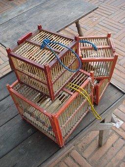 Cages, Birds, Bird, Cage, Market, Prison, Freedom, Wood