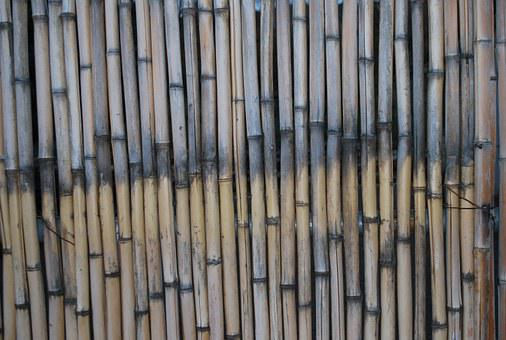 Bamboo, Macro, Texture, Natural, Brown, Pattern, Wood