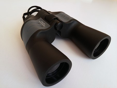 Binoculars, Watch, Spy, Espionage, Observation, See