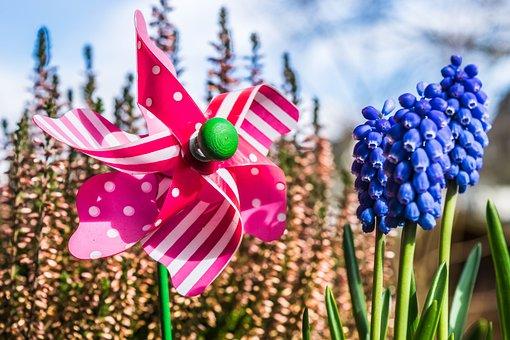 Windspiel, Windmill, Toys, Turn, Colorful, Pinwheel