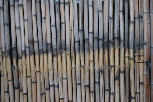 Bamboo, Macro, Texture, Natural, Brown, Pattern, Wood
