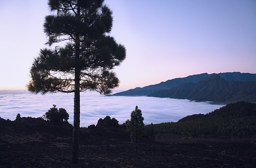 Above The Clouds, Mountains, Abendstimmung, Sky, Dusk