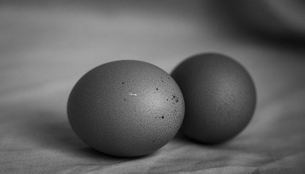 Eggs, Black And White, Food, Easter, Kitchen, Eat, Bio