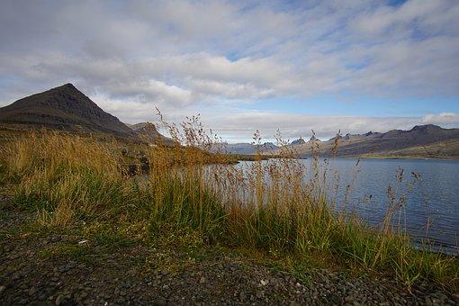 Landscape, Grass, Mountain, Water, Sea, Lake, Green