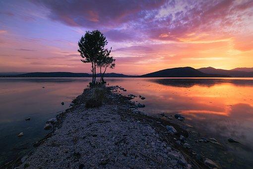 Sunset, Tree, Lonely, Reflections, Amazing, Orange