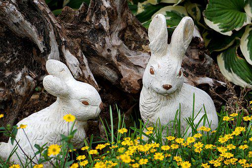 Easter Pictures, Rabbit Ears, Nature, Spring, Easter