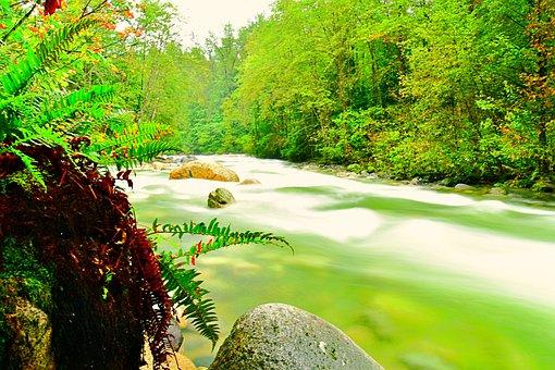 River, Downstream, Nature, Wild, Hiking, Beauty