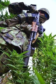 Grass, Ganja, Marijuana, Hemp, Drugs, Medicine