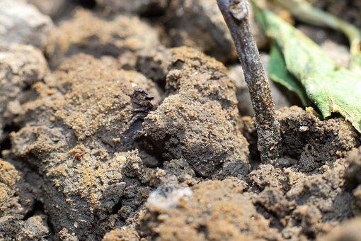 Soil, Earth, Ground, Nature, Garden, Mud, Brown