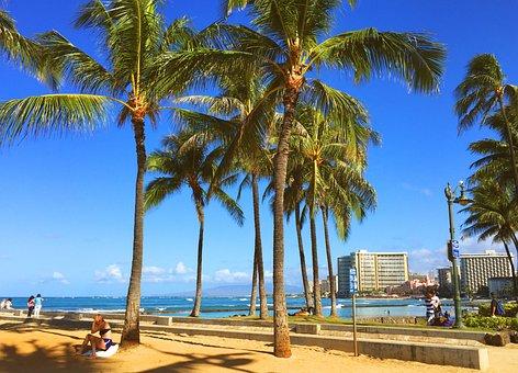 Hawaii, Honolulu, Resort, Waikiki, Beach, Sea