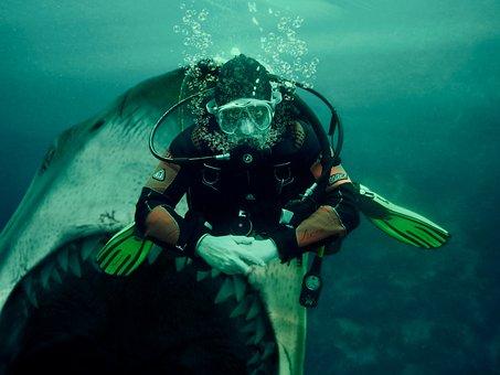 Shark, Diver, Submarine, Oxygen, Bubbles, Man, Danger