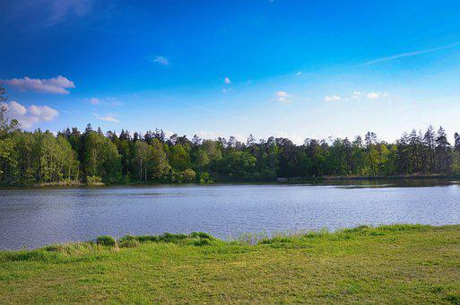 Landscape, Panorama, River, Water, Grass, Forest, Sky