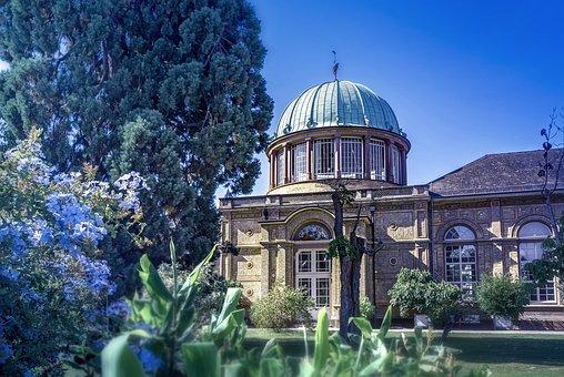 Karlsruhe, Botanical Garden, Summer, Flower, Nature