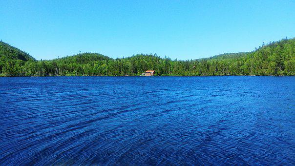 Cabin, Lake, Recluse, Isolated Form, Forest, Nature