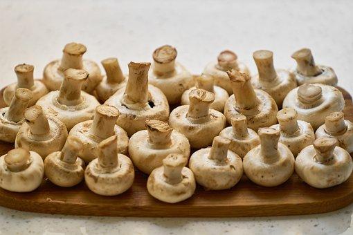 Mushroom, Food, Mushrooms, White, Agriculture, Fresh