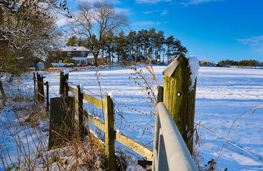 Snow, Fence, Winter, Christmas, Cold, Nature, Country