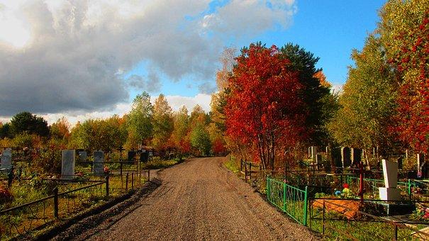Road, Cemetery, Autumn, Trees, Graves, Grave, Death