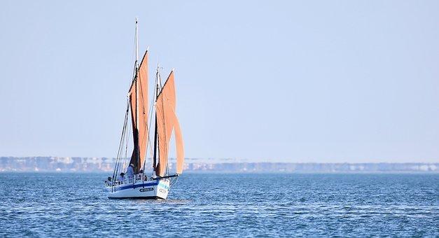Boat, Sails, Sailboat