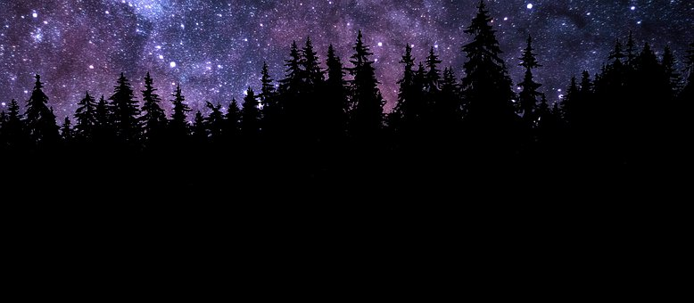 Night, Nature, Forest, Constellation, Sky, Universe