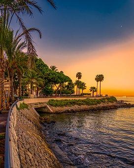 Antibes, France, Summer, Flowers, Plants, Beautiful