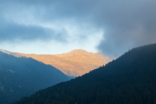 Fog, Mood, Mountains, Davos, Nature, Landscape, Autumn