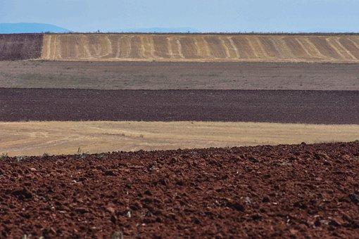 Fields, Castilla, Lines, Landscape, Frames, Mowing