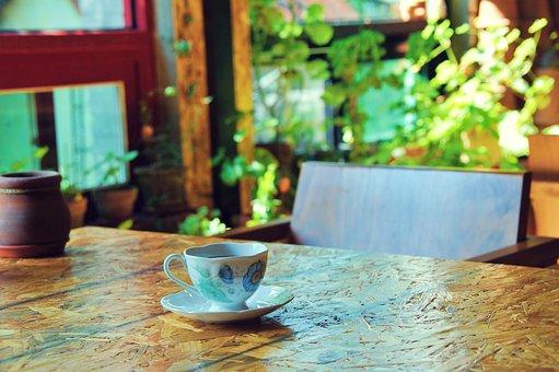 Coffee, Free, Plants, Break, Nature, Well-being, Wood