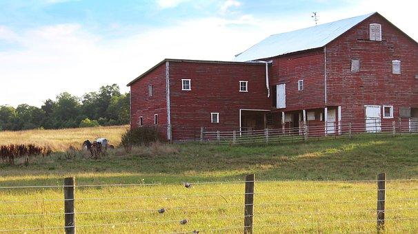 Shenandoah Valley, Virginia, Tractor, Farm, Summer