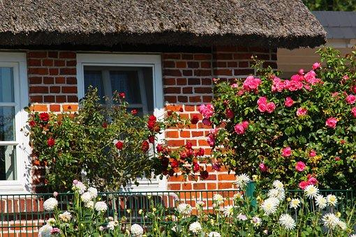 Farmhouse, Front Yard, Rügen Island, Flower Garden