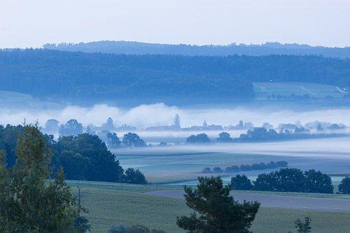Mist, Morning, Mood, Lengnau, Nature, Morning Dew
