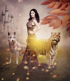 Lion, Wolf, Darkness, King, Queen, Predator, Animal