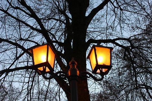 Light, City, Night, Urban, Lights, Trees, Plaza, Chile