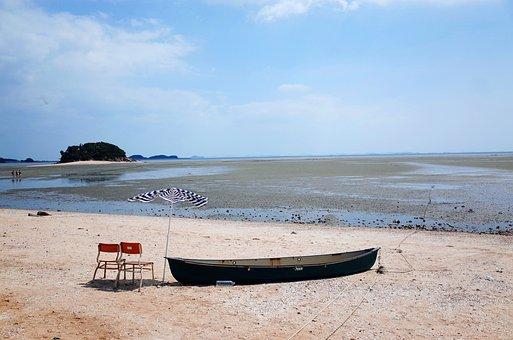 West Sea, Tidal, Beach, West Coast, Birds, Mud