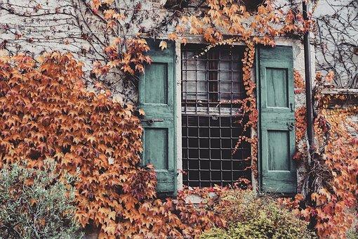 Autumn, Window, Villa, Nature, Construction