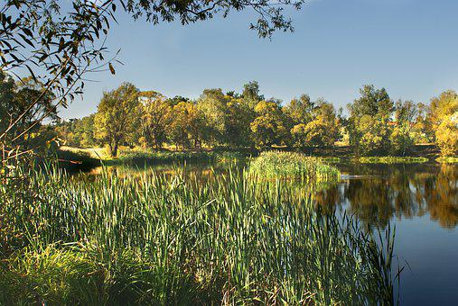 Island, Lake, Nature, Scenery, Landscape, Figure