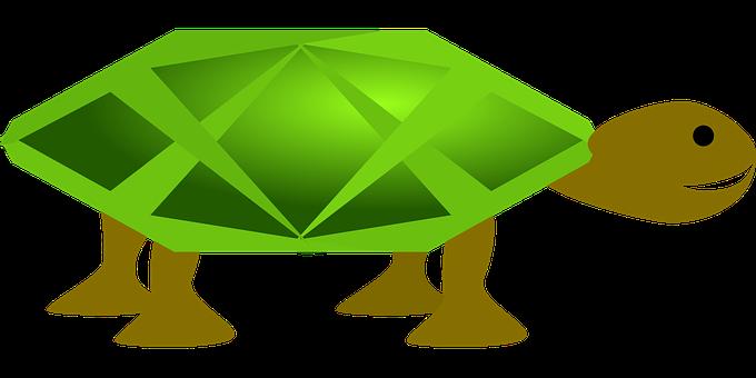 Turtle, Green, Animal, Water, Sea, Ocean, Marine