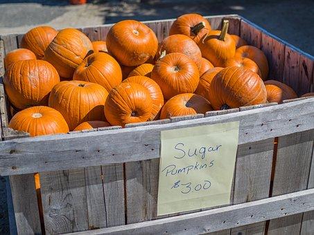 Pumpkin, Crate, Harvest, Autumn, Orange, Food, Fall