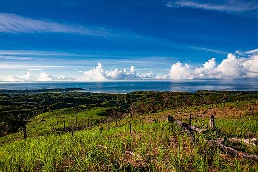 Landscape, Tropical, Sour Golden Coast